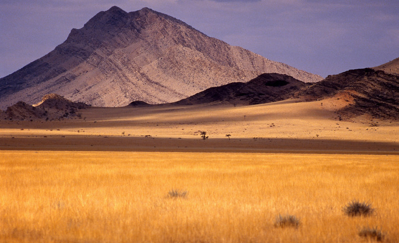 Savannah near the border between Namibia and South Africa, Sperrgebielt National Park, Namibia (1994) © Copyrights Michel Botman Photography