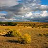 Bushman's Kloof area, near Cederberg Mountains, Western Cape, South Africa