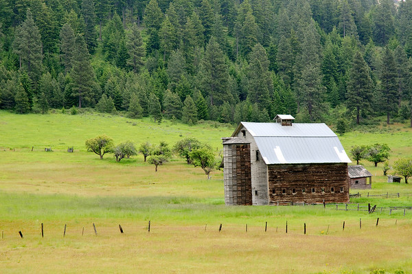 Swauk Creek Barn (Survived the Taylor Bridge Fire)