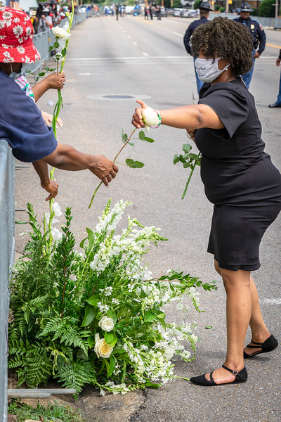 a person from the crowd reaches for a memorial rose that were given out to people there to honor the final jubilee for john lewis, july 26, 2020