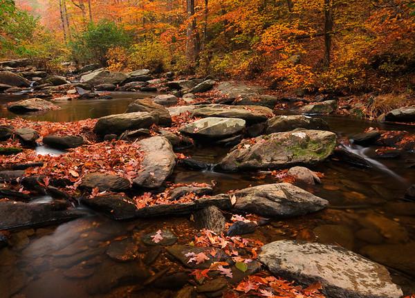 Chinnabee Creek Cheaha State Park, AL