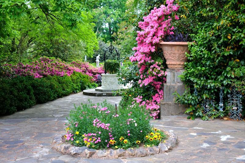Azaleas at Jasmine Hills Gardens!