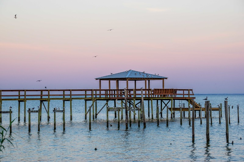 Pier and Birds at Sunrise
