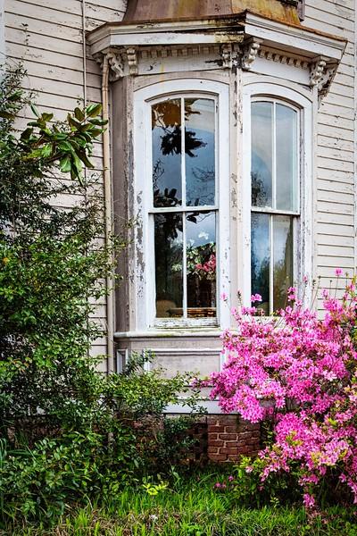 Victorian Bay Window!