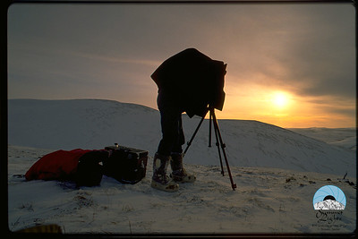 Yukon Quest Photographer