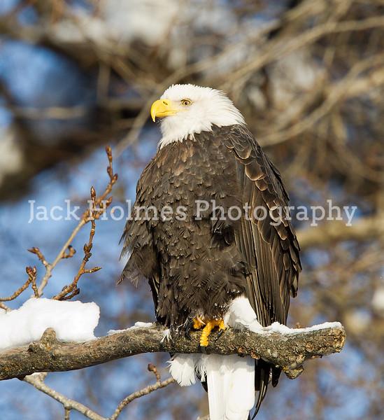 Friday_Eagles_7D-55