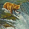 InTheGrasp-AlaskaD700_1424_DxO