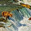 DoubleEscape-AlaskaD700_1505