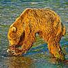 TheFeast-AlaskaD700_1627_DxO