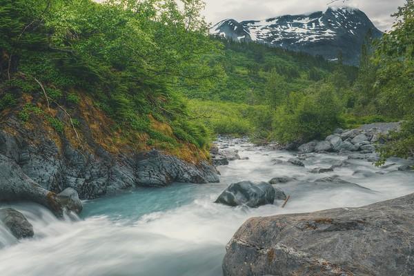 Whittier creek