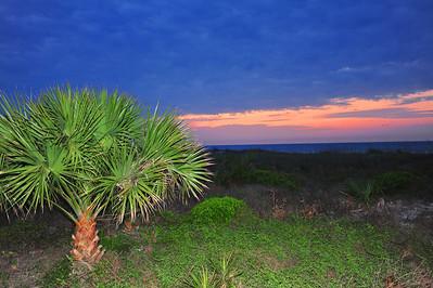 """Sunset and Palm"". Hilton Head, SC."