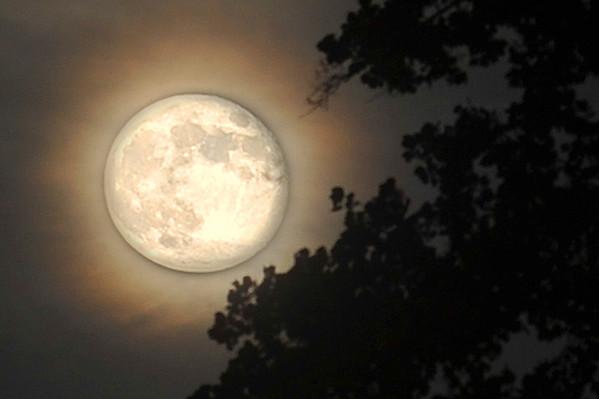 """Not the Super Moon"". A little photoshop action."