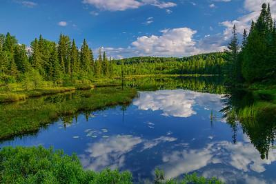 Beaver Pond Superior National Forest_PSundberg