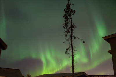AK-Northern-Lights-ibjc-8919