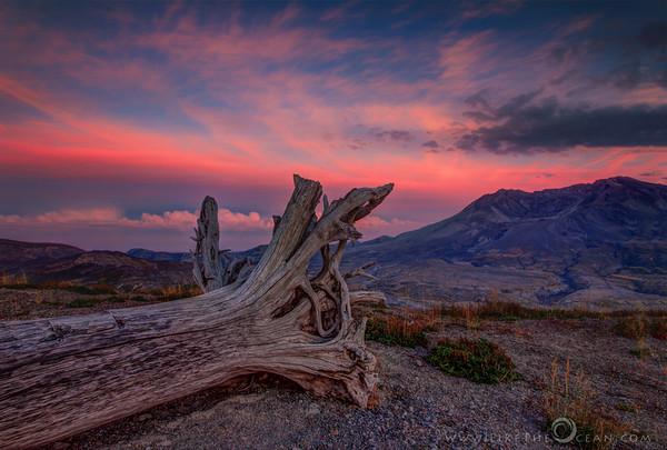 Rugged Terrain of Mt. St. Helens