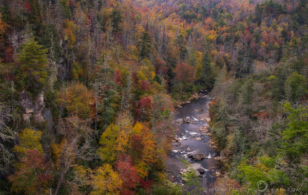 A beauty called Linville Gorge