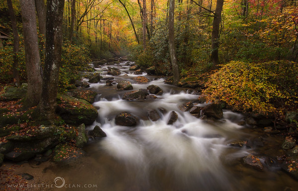 Just in time by Jones Gap