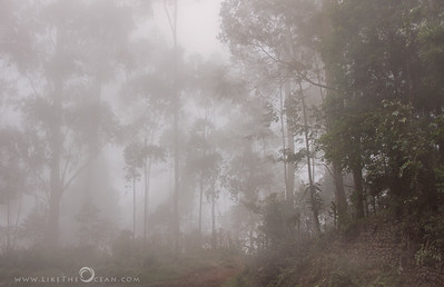 Magic of Kodai