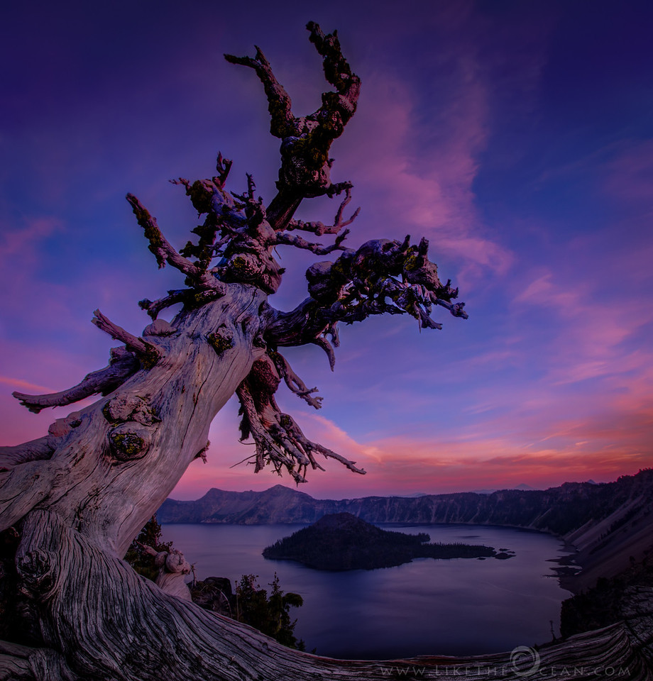 Twilight Colors at Crater Lake The collapse of the Mount Mazama around 7,700 years ago, led to the formation of the crater which is now famously known as the Crater Lake. If I had to encapsulate Crater lake in a single frame this would be it. The crater, the volcanic remains on the rim, wizard island, serene lake, the gnarled tree showing age – love it all. The sunset was behind me, but the twilight colors and its reflections on the lake was just mesmerizing. After couple of different composition ended up with this panorama of two horizontal shots. Thought the pseudo square composition would lend well to the scene. I loved this off road spot so much that I ended up spending the reminder of the evening out there :) Though this is not the classical cliché shot with deep blue colors of crater lake, something keeps pulling me back to this. How do u like it ?!!!