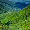 springtime in the blue ridge mountains