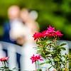 wedding setup details in garden venue