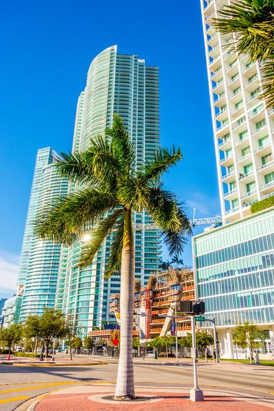 miami florida city skyline and streets