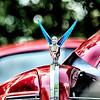 woman holding wheel car hood emblem