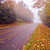 autumn foggy day along blue ridge parkway