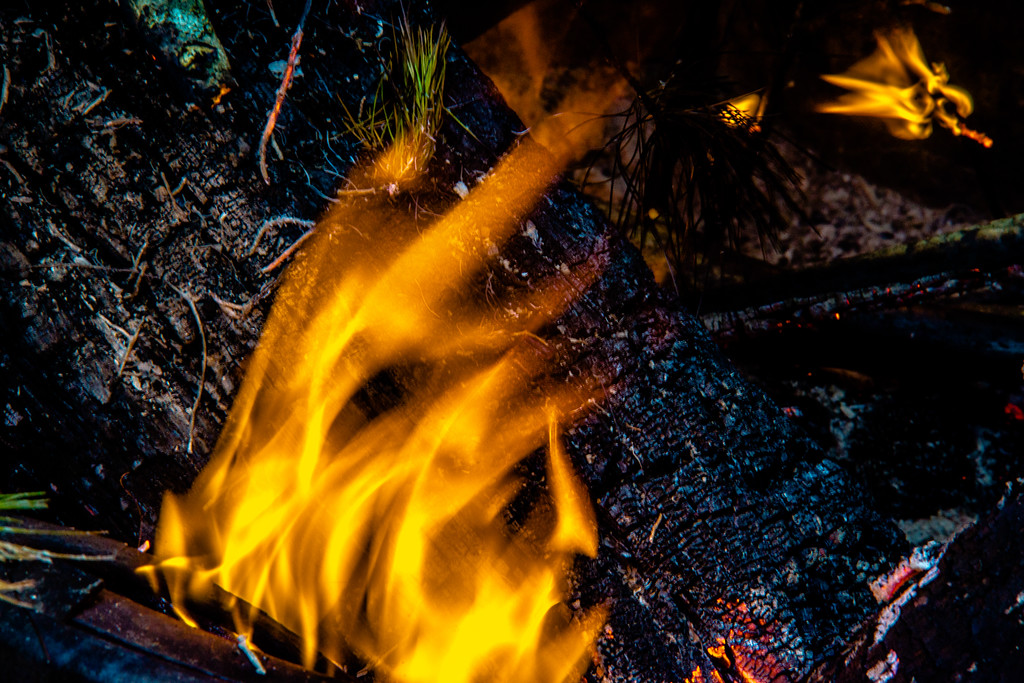camp fire flames burning at night after hike