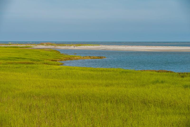nature scenes on hunting island south carolina