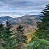 autumn foliage on blue ridge parkway near maggie valley north carolina