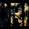 florida palm trees sunset word text wwith photo