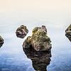 rocky calm waters in key west