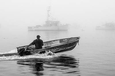 In the Fog, South Freeport