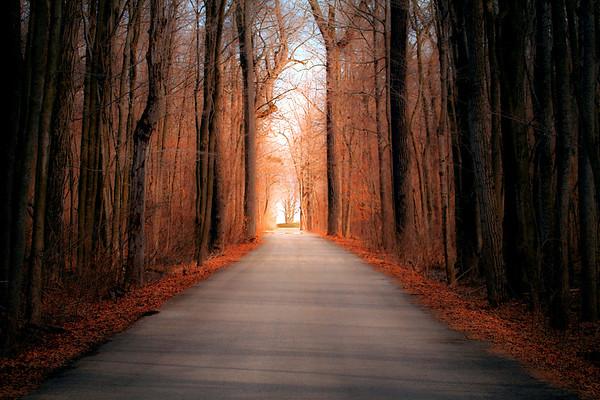 Toward the Light