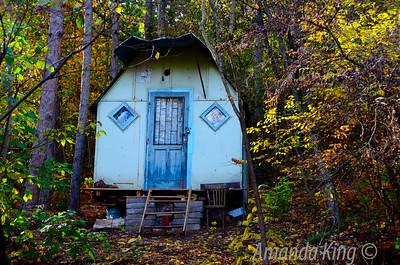 Little woodland cabin