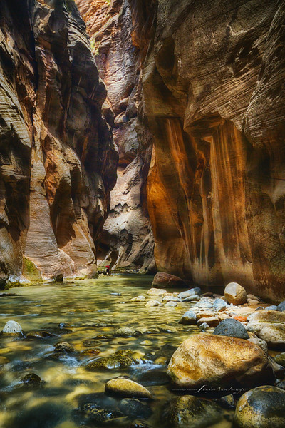 Narrows #14