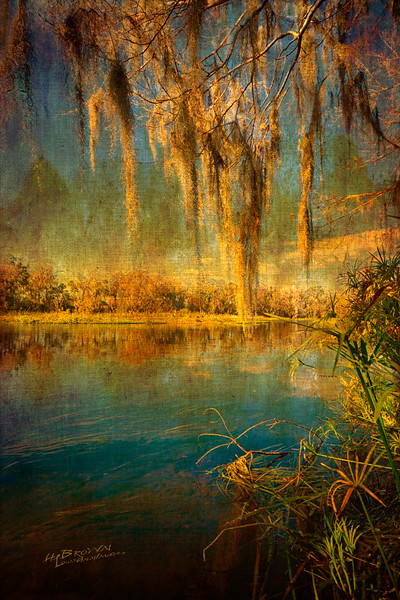 Old Florida Waters...