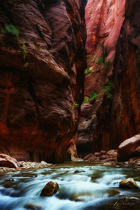 Narrows #17