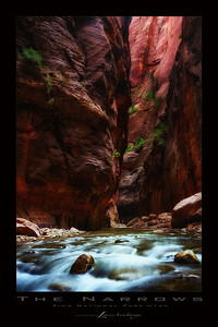 Narrows #18