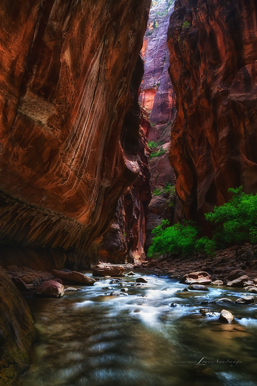 Narrows #15