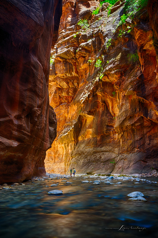 Narrows #5