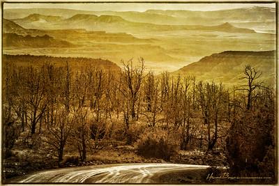 Winter Horizon... Kolob Terrace Road, Zion National Park, Utah.