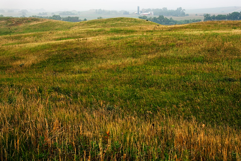 Cottonwood River Prairie- early morning