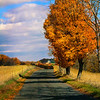 Tranquil Autumn Road