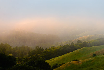 Foggy Sunset, Santa Cruz Mountains