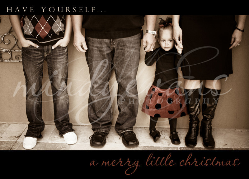 amerrylittlechristmas_forsgren
