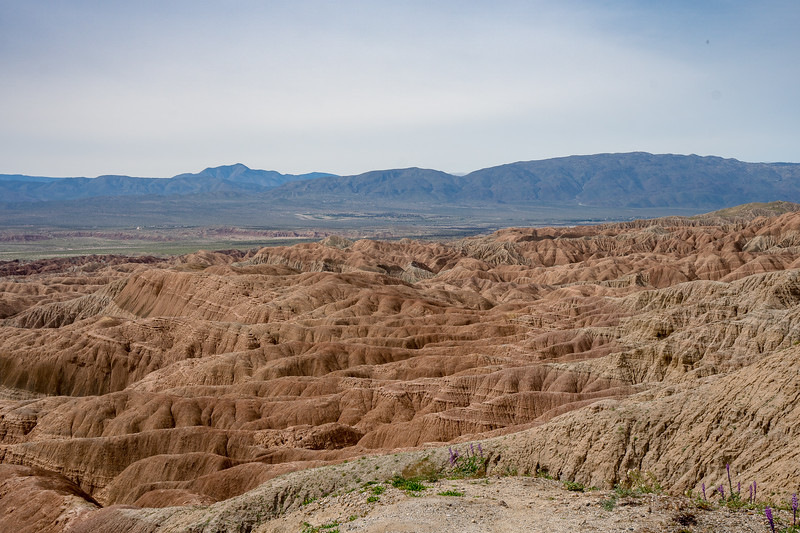 Standing at the edge and looking down at the Anza Borrego Badlands