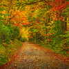Pisgah Nat Forest side road-Oct142014_0120