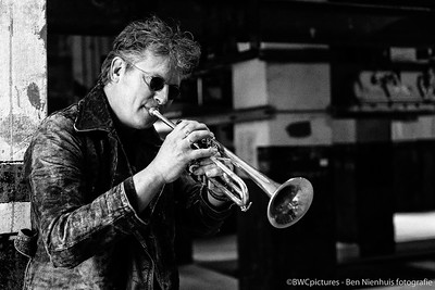 Bandfoto's Blues Commitment 2013 (07)